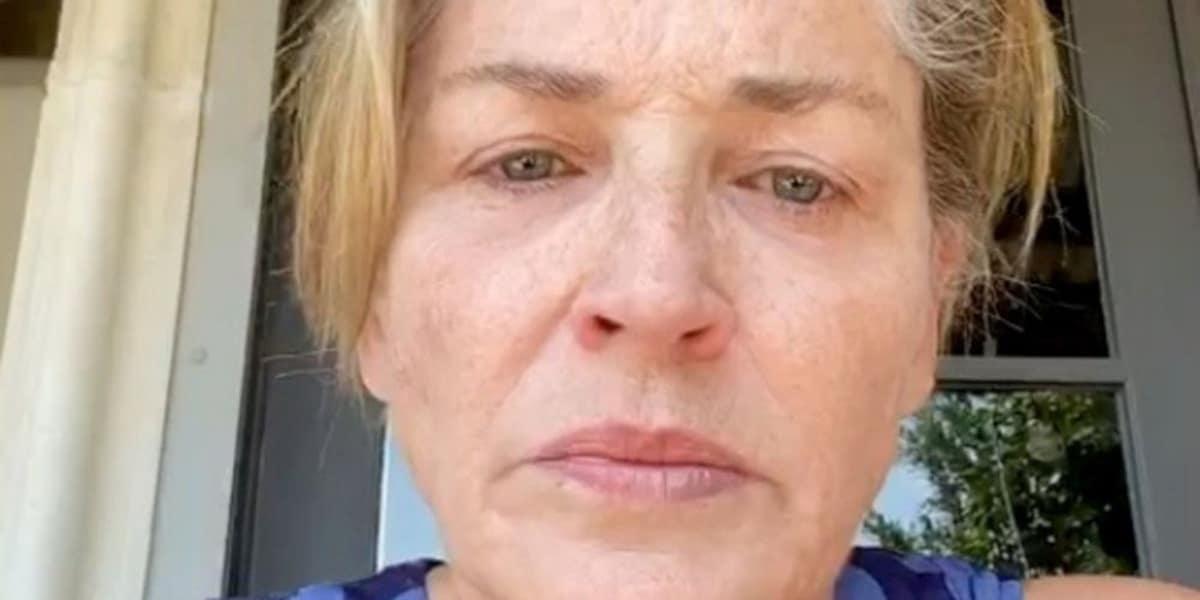 Sharone Stone accuse Donald Trump