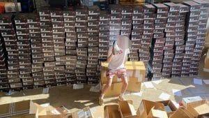 Nike dans la tourmente après des reventes illégales de chaussures par le fils de la vice-présidente, c'est incroyable…