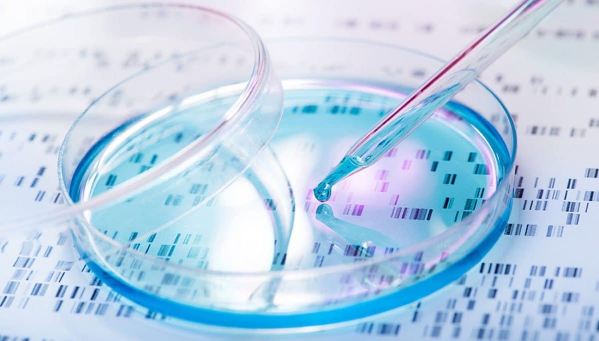 Intelligence artificielle médecine covid