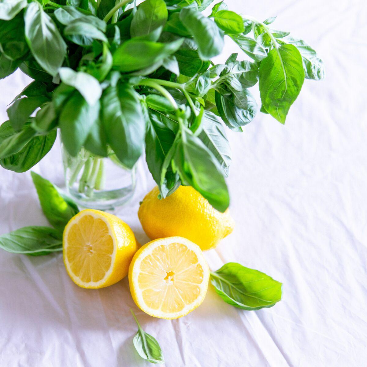 Astuce cuisine : découvrez le meilleur moyen de conserver durablement le basilic!