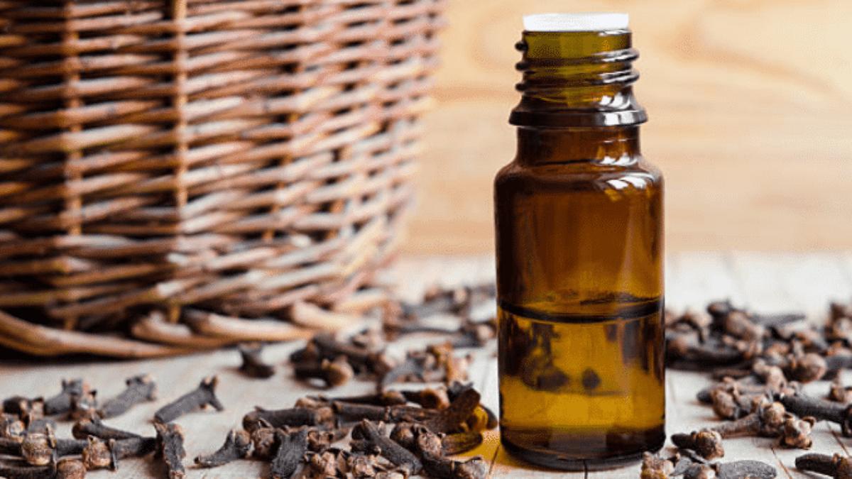 clous-de-girofle-huile-essentielle-1200x675