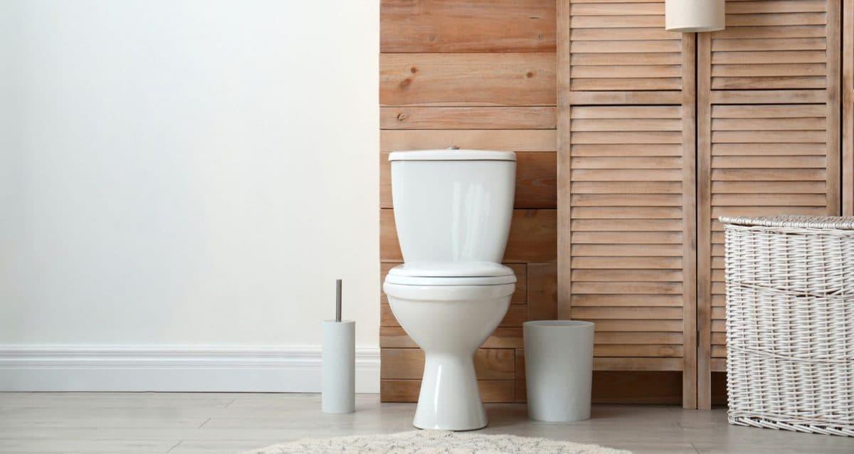entretien toilettes